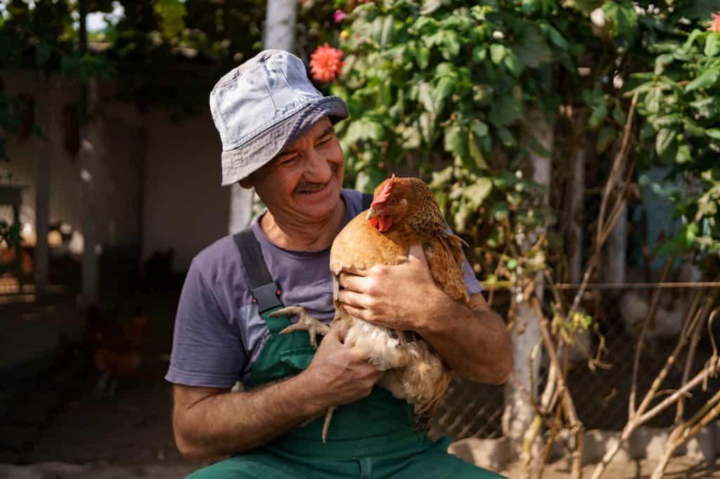 permaculture animals