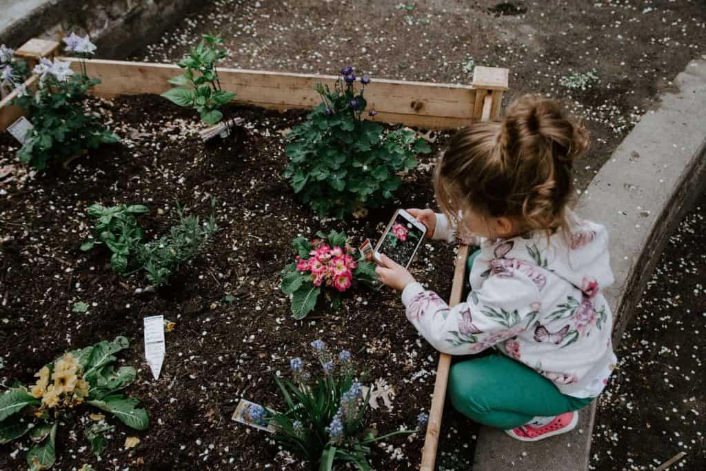 choosing the right garden bed